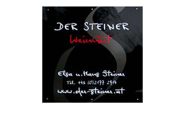 Logo_Hans_Steiner